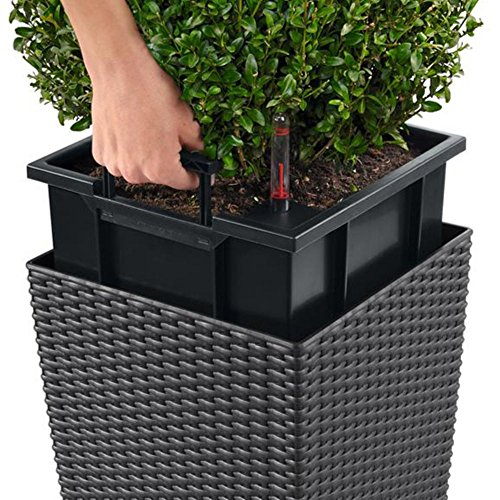 Lechuza Cube Cottage 50 Planter, Granite Wicker - Large Outdoor Planters: Amazon.com