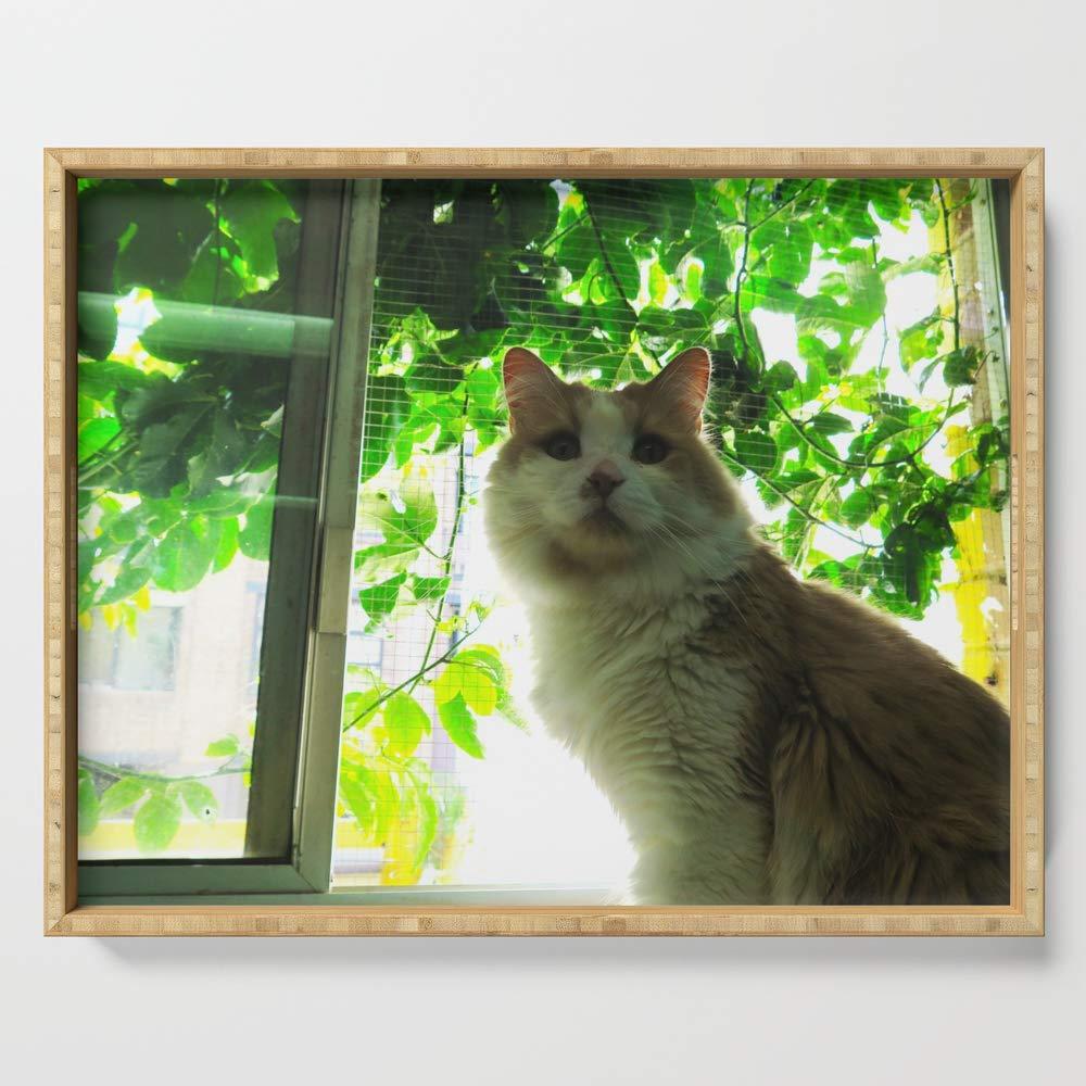 Society6 Serving Tray with handles, 18'' x 14'' x 1 3/4'', Marmalade Window Kitty by jillcm