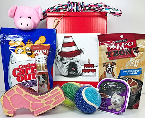 Specialty Gift Boxes Dog Gift Box Basket For A Favorite Canine Fur Baby - Bulldog Bull Dog with Birthday Cake - Send These Treats and Toys to a Furry Doggie Pet Friend! - Prime