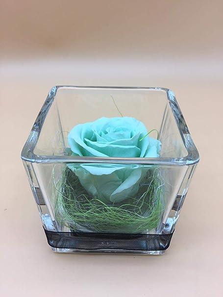 Rosa eterna Verde Menta. Gratis TU ENVÍO. Rosa eterna Verde Menta. Rosa preservada Verde Menta. Hecho en España.: Amazon.es: Hogar