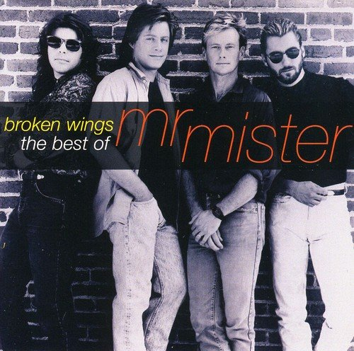 Mr. Mister - 80s Pop Hits [Sony] - Zortam Music