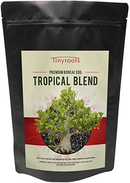 Amazon Com Tropical Bonsai Tree Soil Blend From Tinyroots 100 Organic Fast Draining Pre Mixed Succulent Potting Soil Mix Perfect For Healthy Bonsai Growth 2 Quarts Bonsai Tools Garden Outdoor