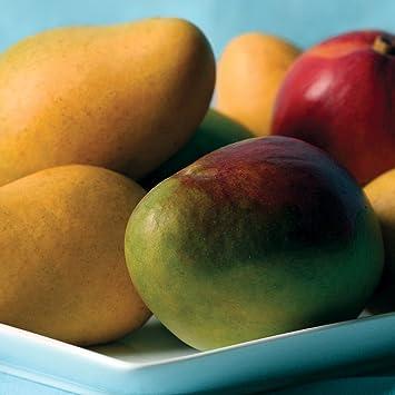 10f7142aec8 Amazon.com   Mangos - 7 lbs - Mangos From the Fruit Company ...