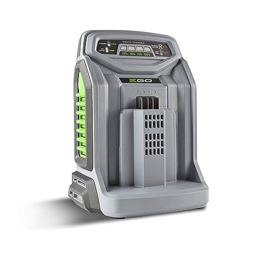 Ego Power Plus Cargador de Baterías Rápido para Pilas ch5500 ...