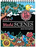 Spiral-Bound Anti-Stress Adult Coloring Book with 50 Scenery Coloring Pages Printed on Artist-Quality Coloring Paper by ColorIt
