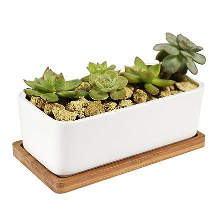 Amazon Ceramic Flower Pots Ymtm Decorative Mini White