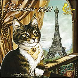 Calendrier 2021 Les Chats enchantés: Amazon.fr: Pineaux, Séverine