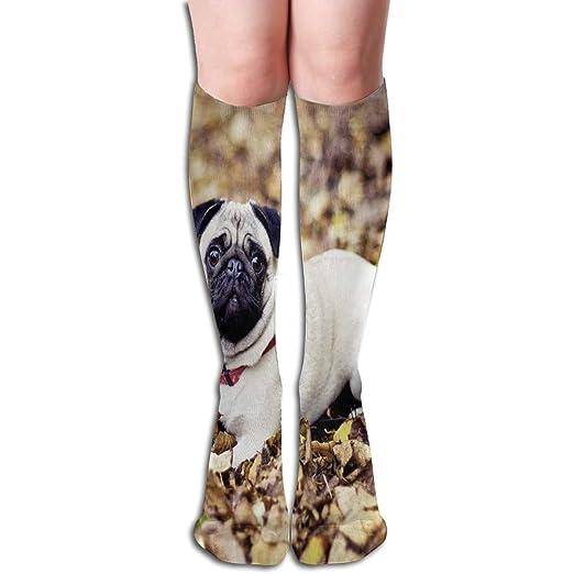 Amazon.com  Socks Pug HD Fabulous Womens Stocking Holiday Sock Clearance  For Girls  Clothing 2cdb33ec6f