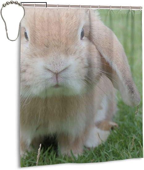 "Cute Rabbit Bathroom Decor 60x72/"" Shower Curtain Polyester Waterproof Fabric 86"