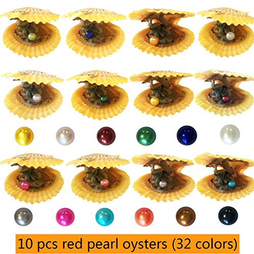 10 pcs Red Shell Pearl Oysters 6-8mm Rainbow Pearls Inside Birthday Gift Pearl Party (10 pcs red Shell Oysters)