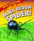 Black Widow Spider!, Willow Clark, 1607549689