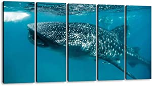 KiiAmy 5 Panels Art Wall Decor Whale Shark Feeding in oslob Philippines Whale Shark Stock Artwork Modern Canvas Prints Office Bedroom Home Decor Framed Painting Ready to Hang (60''Wx32''H)