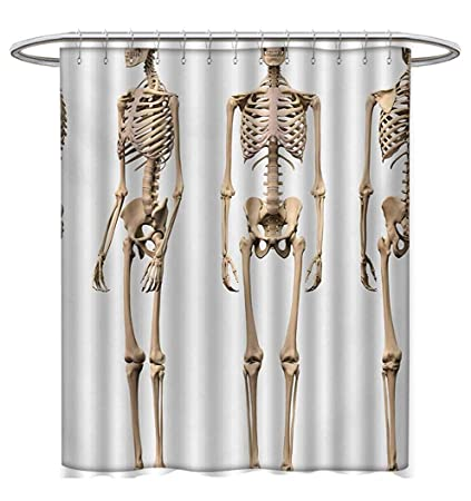 Human Anatomy Shower Curtains Waterproof Man Male Skeleton Skull Different Perspectives Medical Humor Illustration Bathroom