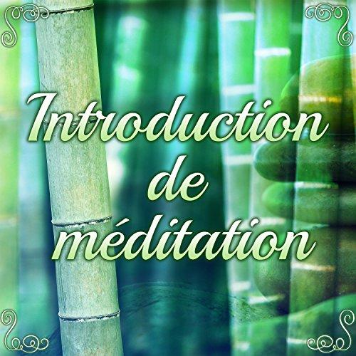 Introduction de méditation - Break pour l'esprit: Apprenez à méditer simplement pour vous détendre et changer de regard
