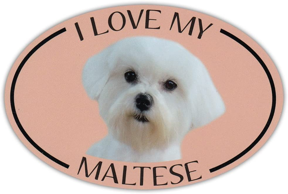 Oval Dog Breed Picture Car Magnet Bumper Sticker Decal I Love My Beagle