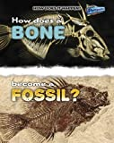 How Does a Bone Become a Fossil?, Melissa Stewart and Heinemann Library Staff, 1410934535