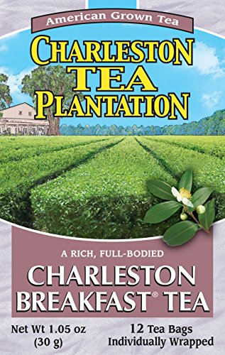 American Classic Pyramid Teabags, Charleston Breakfast, 12 Count