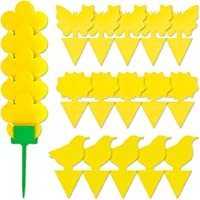 UTSLIVE 20PCS Dual-Sided Yellow Sticky Traps Gnat Sticky Traps for Fungus Gnats, Whiteflies, Aphids, Leafminers with…