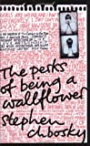 Front cover for the book The Perks of Being a Wallflower by Stephen Chbosky