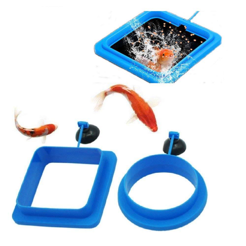 ZENNSINN 5 in 1 Stainless Steel Aquarium Tank Aquatic Plant Tweezers Scissor Spatula Tool Set Aquariums & Fish Starter Kits … UK-0719-01