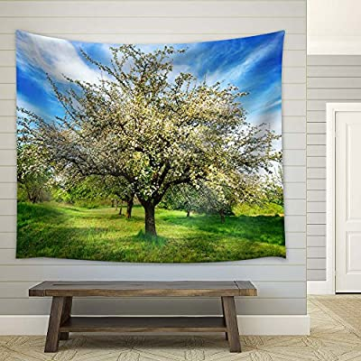 Premium Product, Stunning Piece, Blossom Apple Tree in Spring
