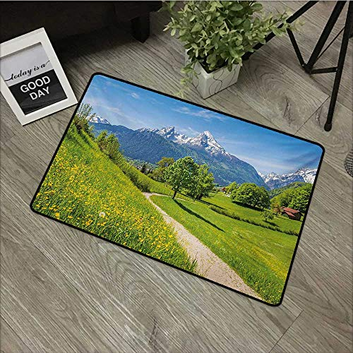 Moses Whitehead Entry Way Outdoor Door Mat Landscape,Wildflowers in The Alps and Snow-Capped Mountains National Park Bavaria Germany,Yellow Green,with Non Slip Backing,30