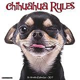 Chihuahua Rules 2017 Wall Calendar