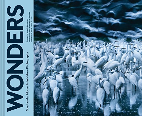 Wonders: Spectacular Moments in Nature Photography (Best Moments In Life Images)