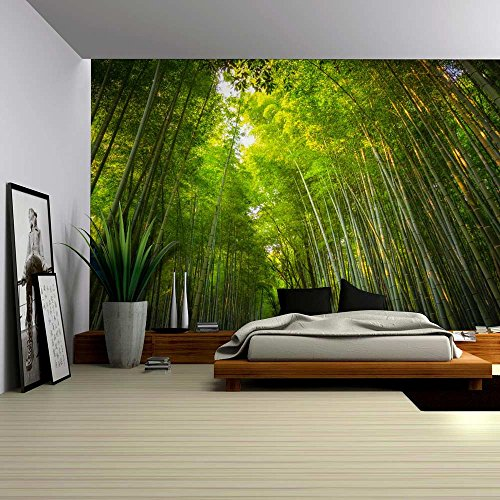 Tall Forest of Bamboo Tree