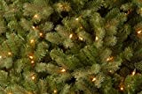 "National Tree 6.5 Foot ""Feel Real"" Downswept Douglas Fir Tree with 650 Clear Lights, Hinged (PEDD1-312-65)"