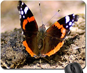RWYZPAD Non-Slip Rubber Mouse Pad Office Computer Laptop Games Mat Admiral Butterfly Wing Public Record Summer Noble