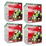 """Snapware 12"""" x 12"""" Ornament Box"""