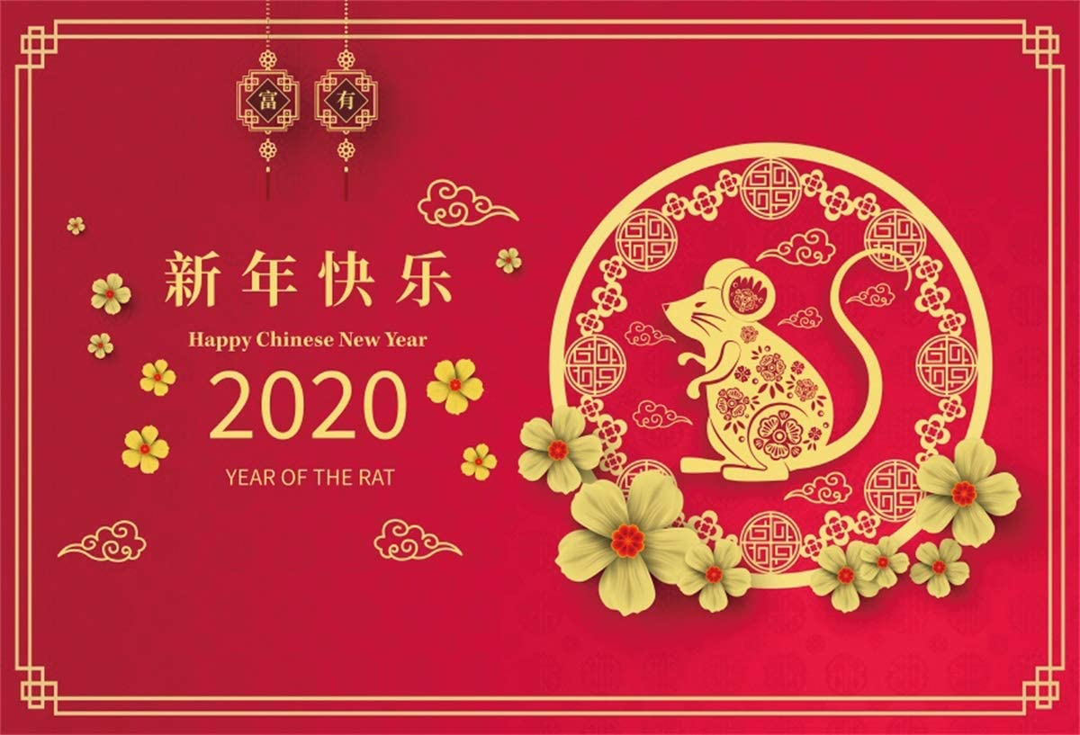 Yeele Chinese New Year Photography Backdrop 10x8ft Year of The Rat Paper Cut Style Background Spring Festival 2020 Events Photo Booth Banner Photoshoot Props Holiday Picture Wallpaper Poster