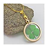 Amazon Price History for:Gold Charm Necklace with Real Genuine Four Leaf Clover