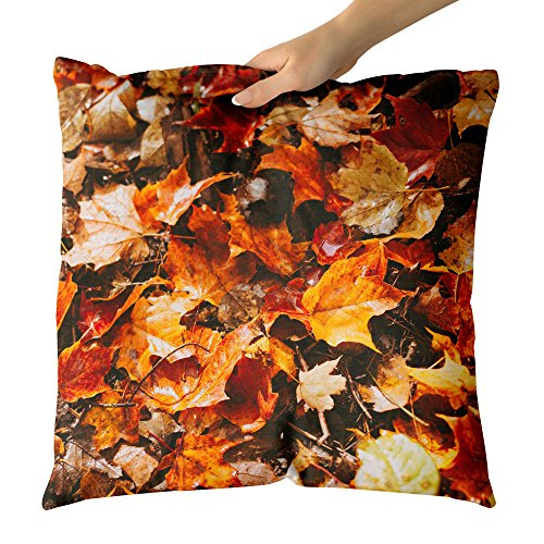 Leaves - Decorative Throw Pillow Cushion - Picture Photography Artwork Home Decor Living Room - 18x18 Inch (8C351) ()
