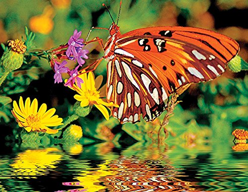 Springbok Puzzles - Magnificent Monarch - 500 Piece Jigsaw Puzzle - Large 18 Inches by 23.5 Inches Puzzle - Made in USA - Unique Cut Interlocking Pieces ()