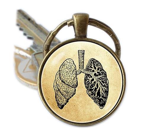 Biología humana pulmones anatomía llavero llavero clave ...