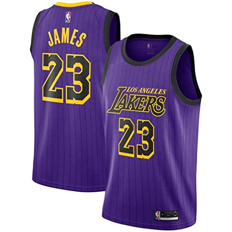 d340df5b15c Jordan Men's Los Angeles Lakers #23 Lebron James Purple 2018-19 NBA  Swingman Jersey