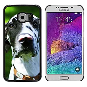 Be Good Phone Accessory // Dura Cáscara cubierta Protectora Caso Carcasa Funda de Protección para Samsung Galaxy S6 EDGE SM-G925 // Great Dane Dalmatian Spots Dog