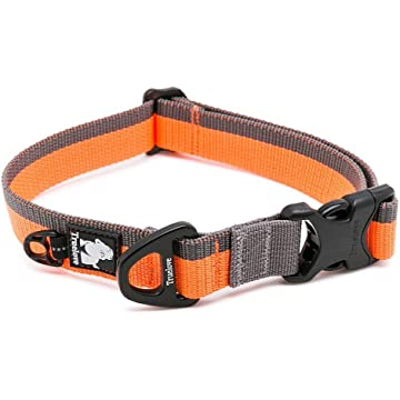 KylePet Dog Collar with D-Ring and Buckle Nylon Webbing Adjustable Martingale Collar for Small Medium Large Dogs, Basic Pet Collar Perfect Match with Leash and Harness, Orange