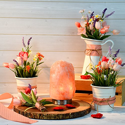 LEVOIT Kyra Himalayan Salt Lamp, Pink Crystal Hand Carved Hymalain Rock Salt Lamps with 18/8 Stainless Steel Base, Dimmable Touch Switch, Holiday Gift, (UL-Listed, 2 Extra Original Bulbs Included) by LEVOIT (Image #1)