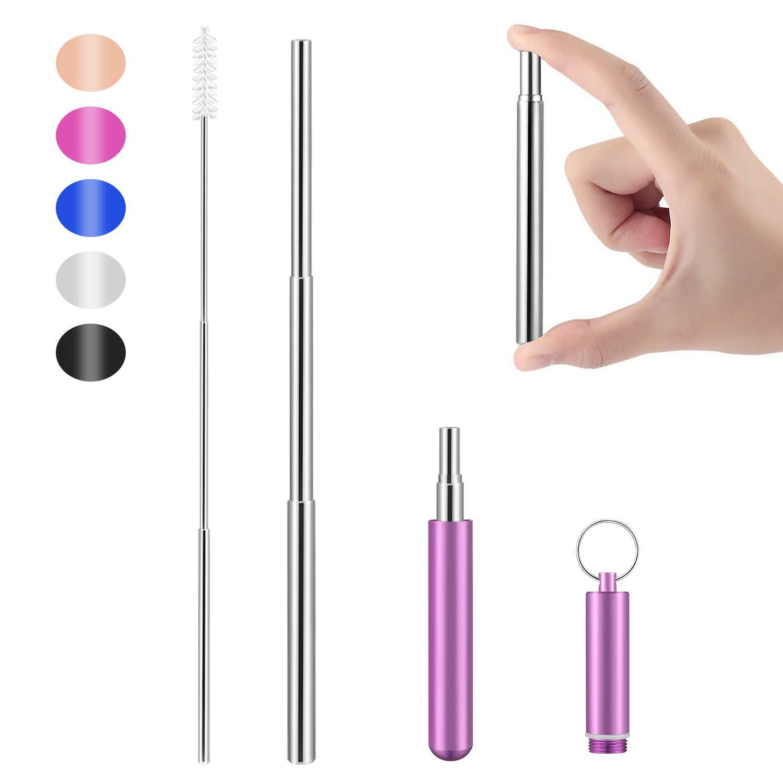 Sliver Straw - Purple Case