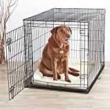 AmazonBasics Single-Door Dog Crate and Padded Bolster Bed - Large