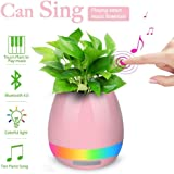 FYUGO Wireless Rechargeable Touch Music Flowerpot Lamp with Bluetooth and Speaker and LED Night Light (Assorted Colour)