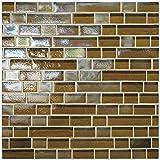 Dal-Tile 34RANDPM1P-GH06 Glass Horizons Tile, Driftwood