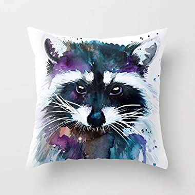 Youthday Pillow Set Raccoon Throw Pillow case Soft Comfortable Feeling Car Chair