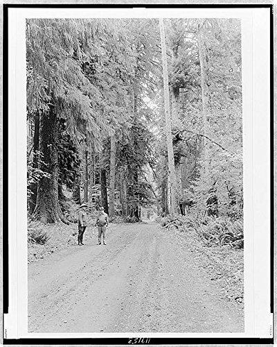 Photo: Secretary Harold Ickes,Supt. Macy,Olympic National Park,Washington,Queets - Macys Park North