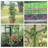 GROWNEER 30 Packs Plant Cages Assembled Tomato