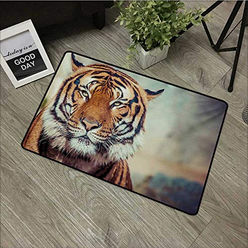 (Anzhutwelve Tiger,Custom Floor Mat Large Feline in a Calm State with Blurred Background Close-up Image of a Beast W 31