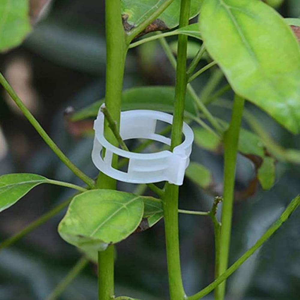 HPiano Clips de Greffe de Plantes,200 pcs Clips de Vigne de Tomate Support pour Plantes de Jardin Clips pour Les l/égumes Tomate Vigne tiges de Croissance Droit et Plus